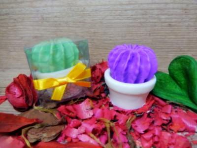 Cactus com vasinho (mini)