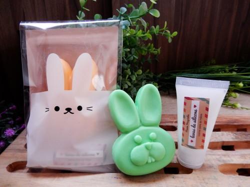 Páscoa - coelho e luva de silicone