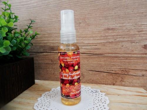 Quitanda Spray bactericida e luva de silicone